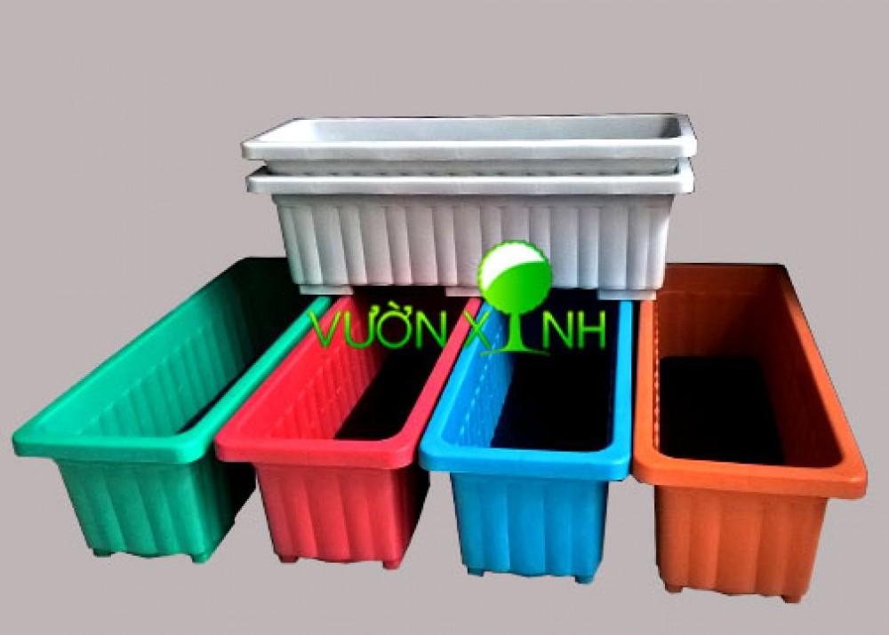 Chậu nhựa dài trồng rau_63.5