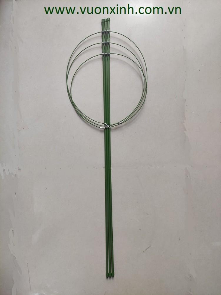 Gía đỡ Hoa Hồng, Cà chua..90cm